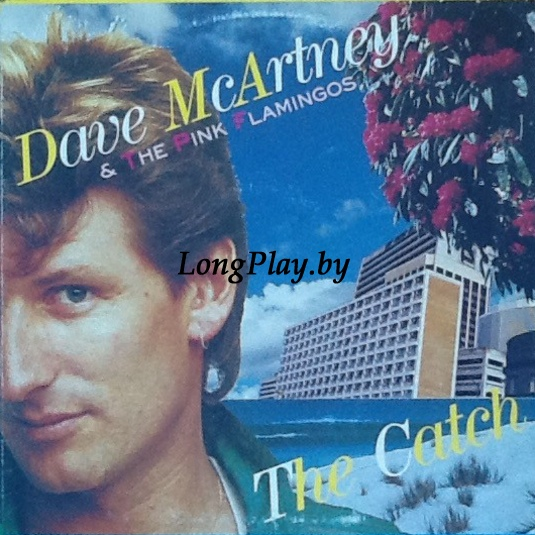 Dave McArtney & The Pink Flamingos - The Catch